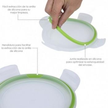 Marketmore Cucumber Seeds...