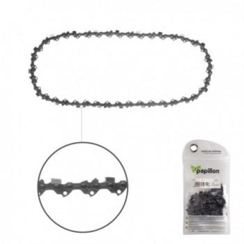 Cantaloupe Melon Seeds (3...