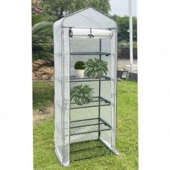 Natural Wood Toilet Seat