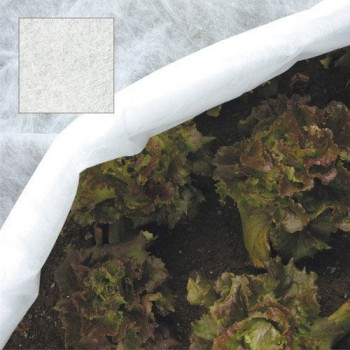 Protective mesh for plants...