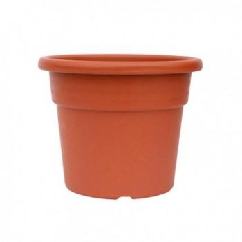 Green Stripe Coconut Fibre...