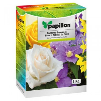 Papillon Roses and Flowers...
